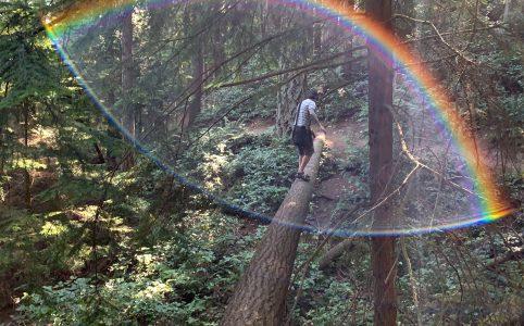 Rainbow - Boeing creek park